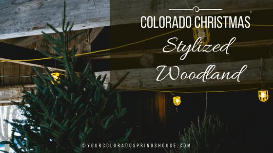 Colorado Christmas, stylized woodland