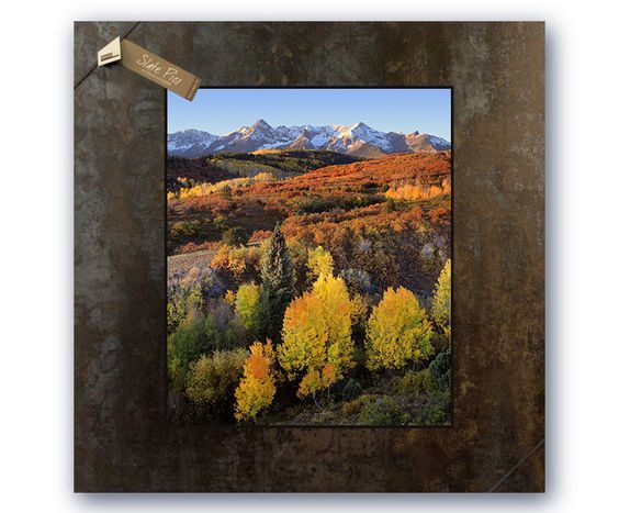 Picture of trees and mountains in fall
